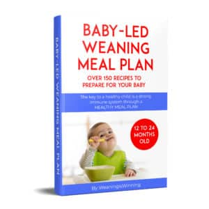 baby meal plan