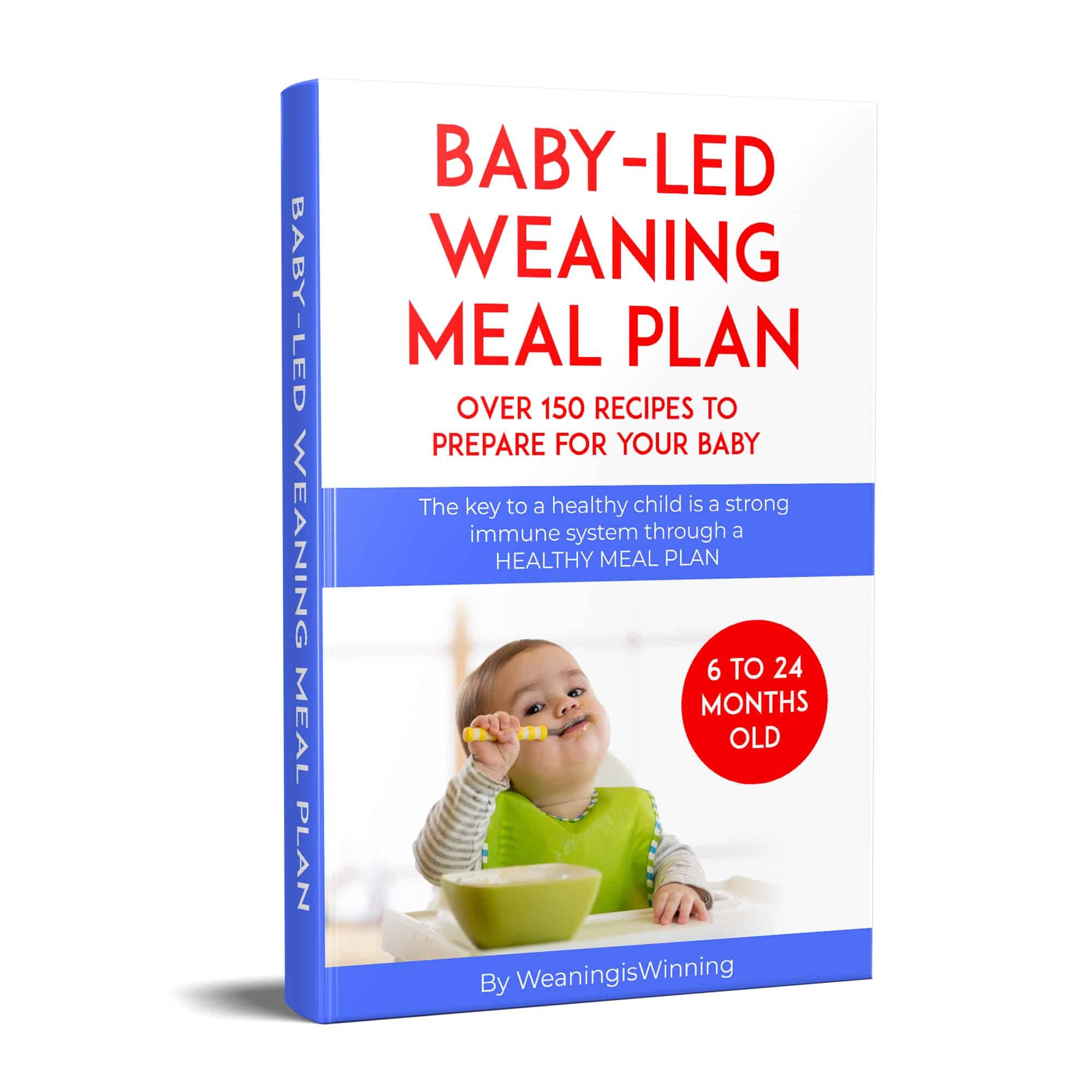 baby led meal plan